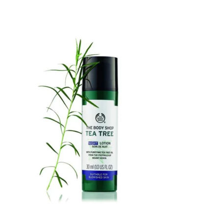 Picture of TEA TREE NIGHT LOTION