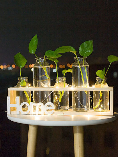 Picture of 1Pc Night Light Creative Unique Flower Water Planting Bottle Rack Design Display - M