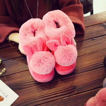 Picture of Women's Slippers Cartoon Cute Design Plush Thick Warm Winter Slippers - 38-39