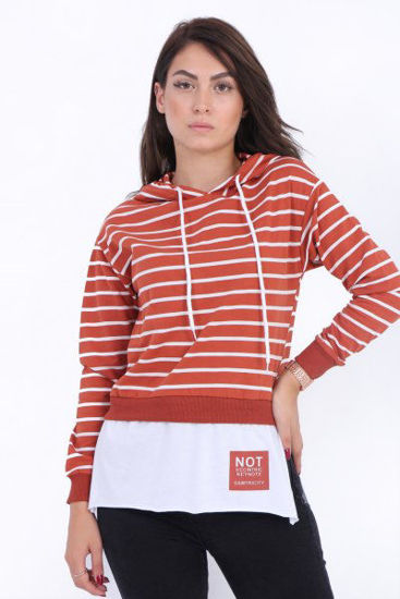 Picture of hooded striped  sweat