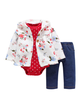Picture of Baby's 3 Pcs Set Long Sleeve Hooded Floral Pattern Casual Pants Set - Size: 6M